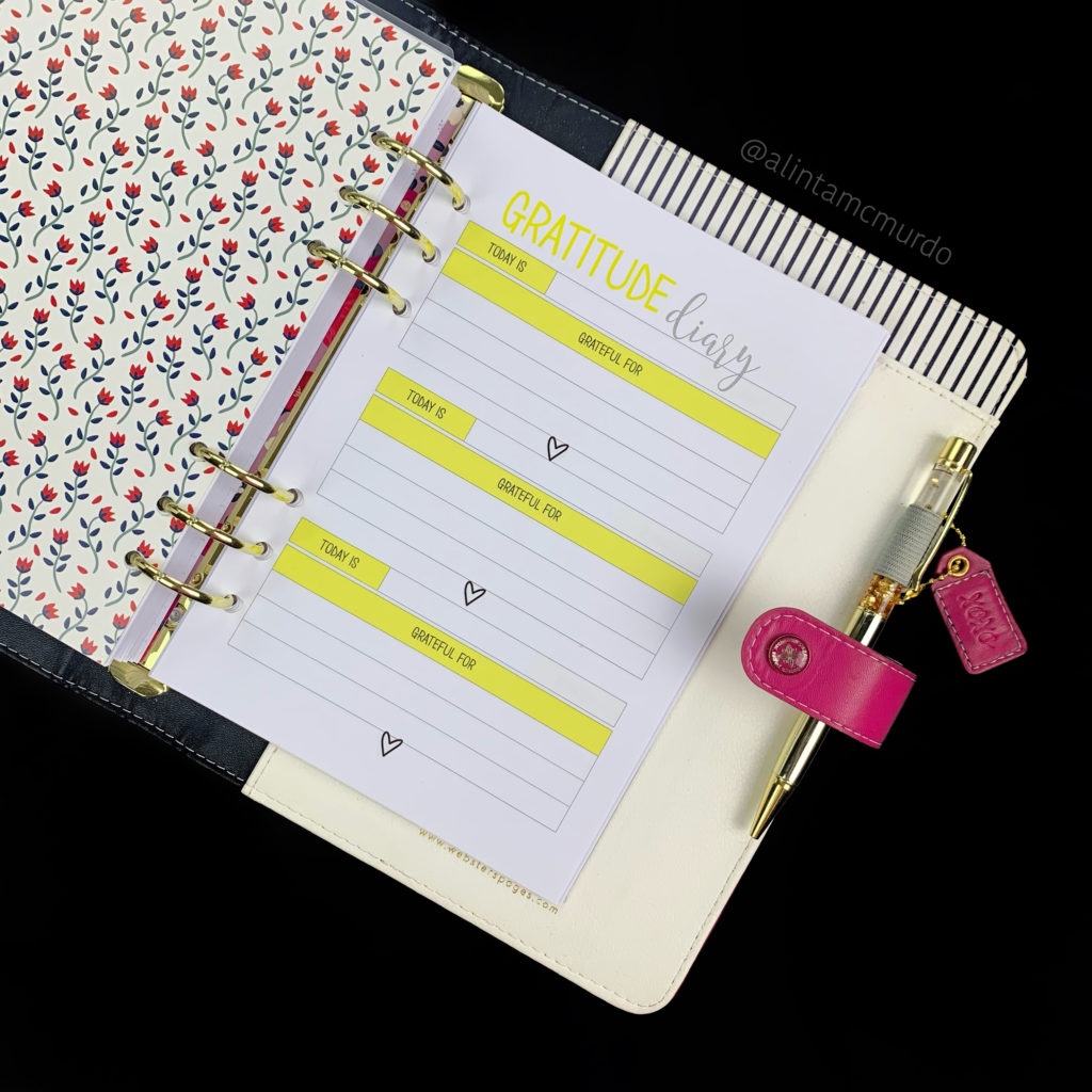 Gratitude Diary Insert - planning for self care and mental health when chronically ill - Love Alinta