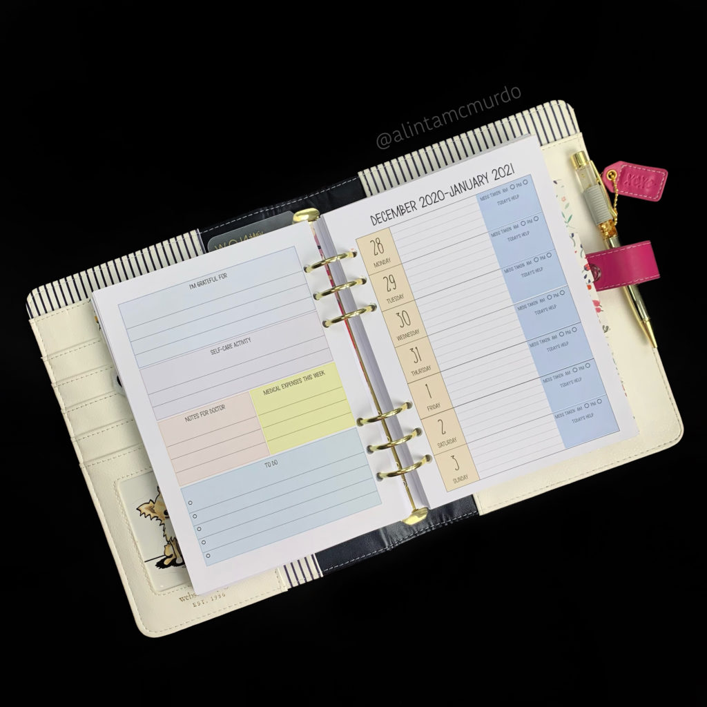 Chasing Planner Peace Medical Treatment Weekly Planner Inserts - doctors, health, medical and chronic illness planning - Love Alinta cruelty free blog